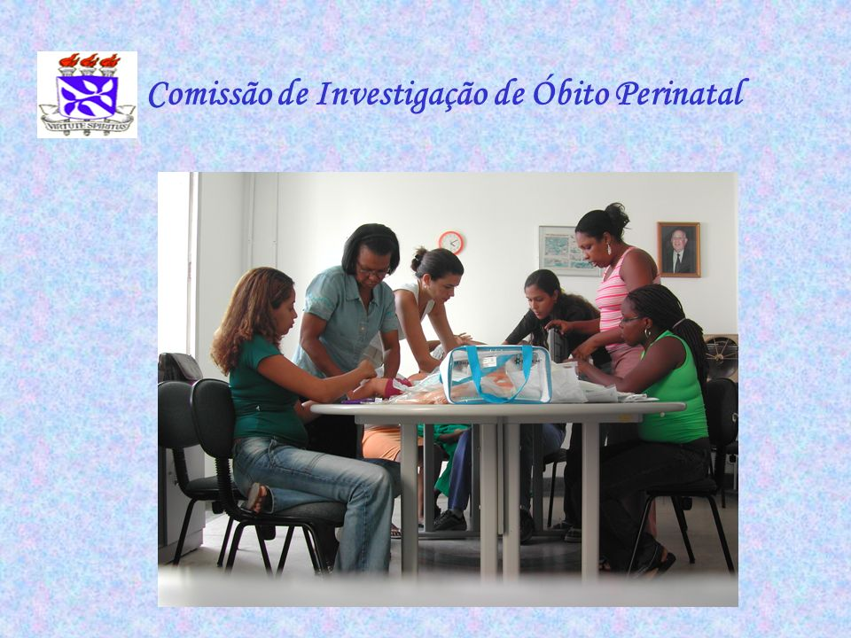 Comissão de Investigação de Óbito Perinatal