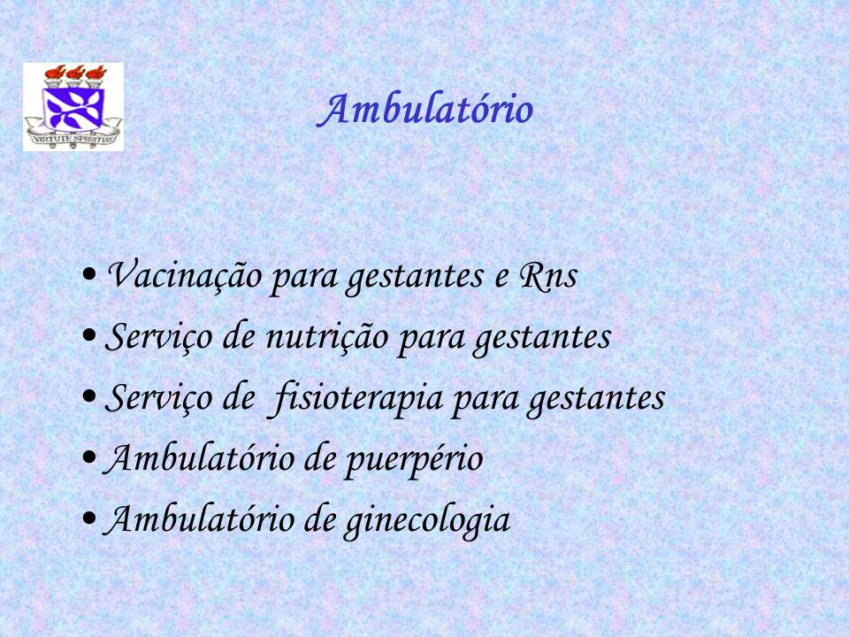 Ambulatório Vacinação para gestantes e Rns Serviço de nutrição para gestantes Serviço de fisioterapia para gestantes Ambulatório de puerpério Ambulató