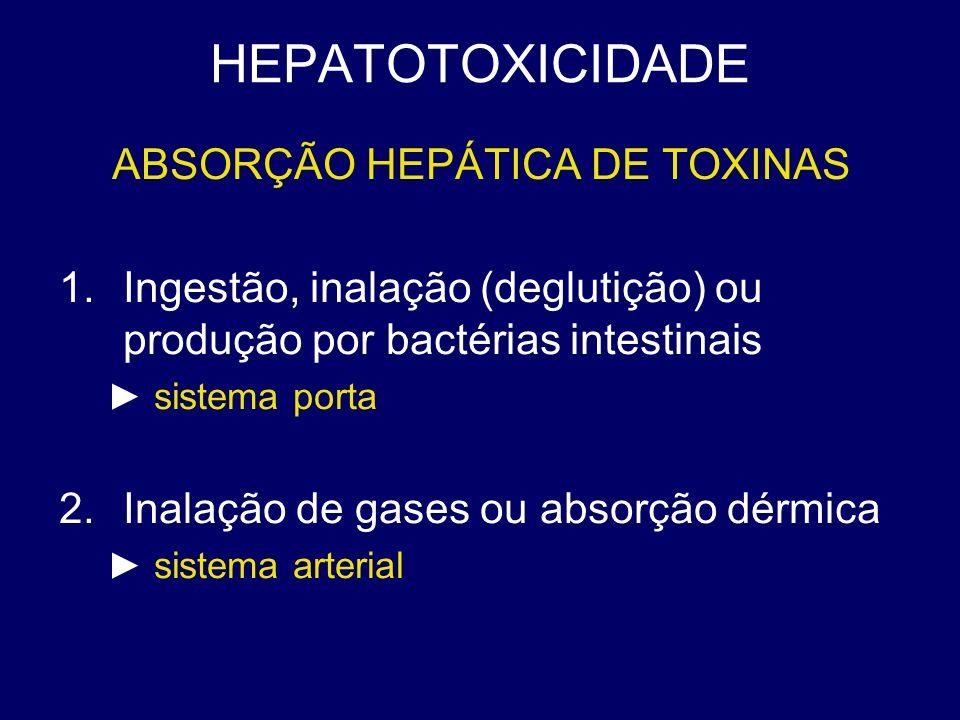HEPATOTOXICIDADE ABSORÇÃO HEPÁTICA DE TOXINAS 1.Ingestão, inalação (deglutição) ou produção por bactérias intestinais sistema porta 2.Inalação de gase