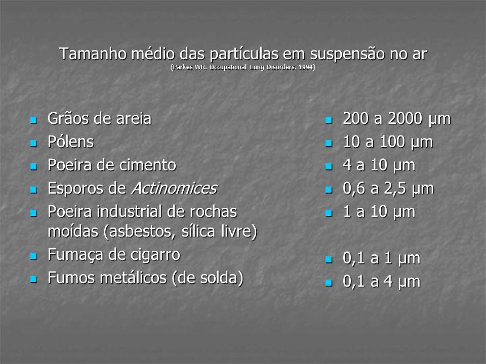Tamanho médio das partículas em suspensão no ar (Parkes WR. Occupational Lung Disorders. 1994) Grãos de areia Grãos de areia Pólens Pólens Poeira de c