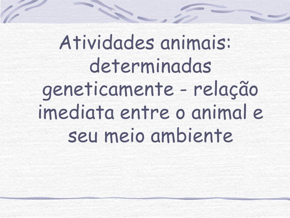 Foi através do trabalho que, em um salto de qualidade, surgiu, de um grupo de primatas, (...) (...) Os primeiros grupos humanos: o ser social