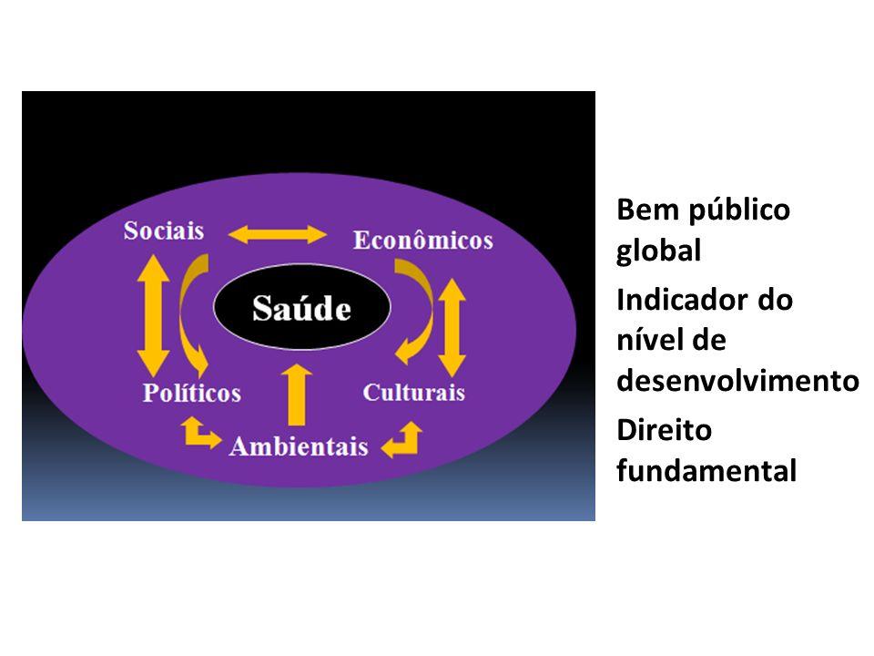 Saúde Bem público global Indicador do nível de desenvolvimento Direito fundamental