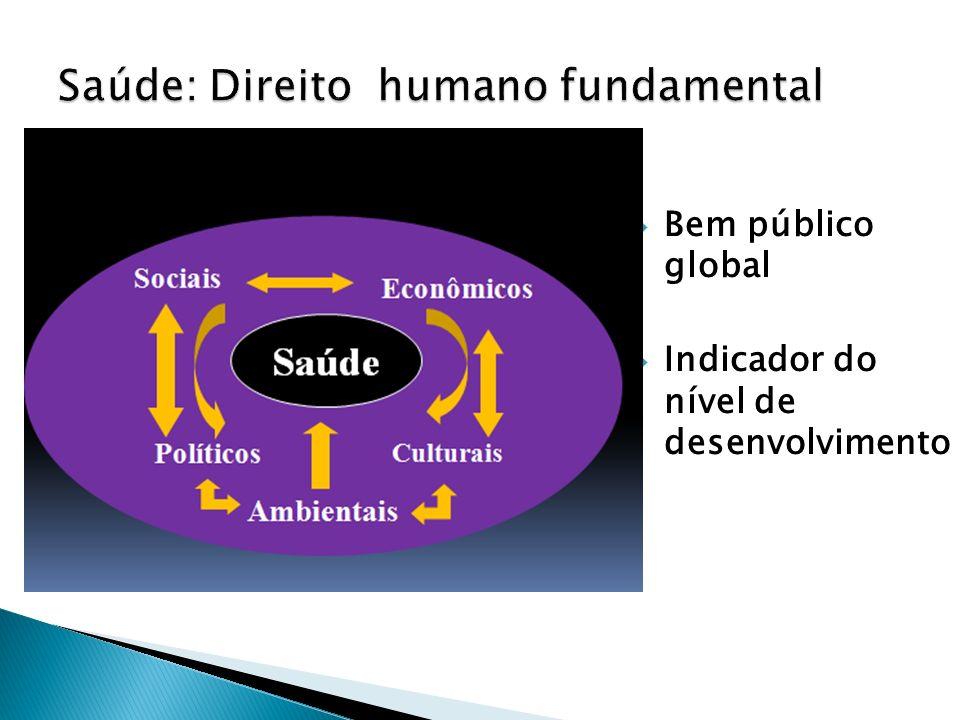 Bem público global Indicador do nível de desenvolvimento