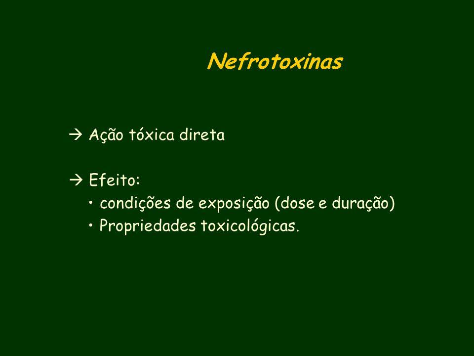 Testes de screnning para Nefrotoxicidade Excreção urinária de enzimas: NAG (enzima lisossomal -N-D-glucosaminidase) Isoenzimas A e B Antígenos renais: anidrase carbônica, ligandina, alanina aminopeptidase (túbulo proximal), fibronectina (glomérulo) Marcadores da fase aguda de lesão renal