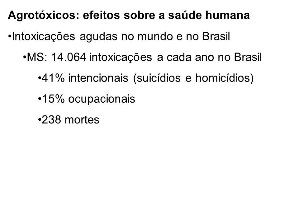 Agrotóxicos: efeitos sobre a saúde humana Intoxicações agudas no mundo e no Brasil MS: 14.064 intoxicações a cada ano no Brasil 41% intencionais (suicídios e homicídios) 15% ocupacionais 238 mortes