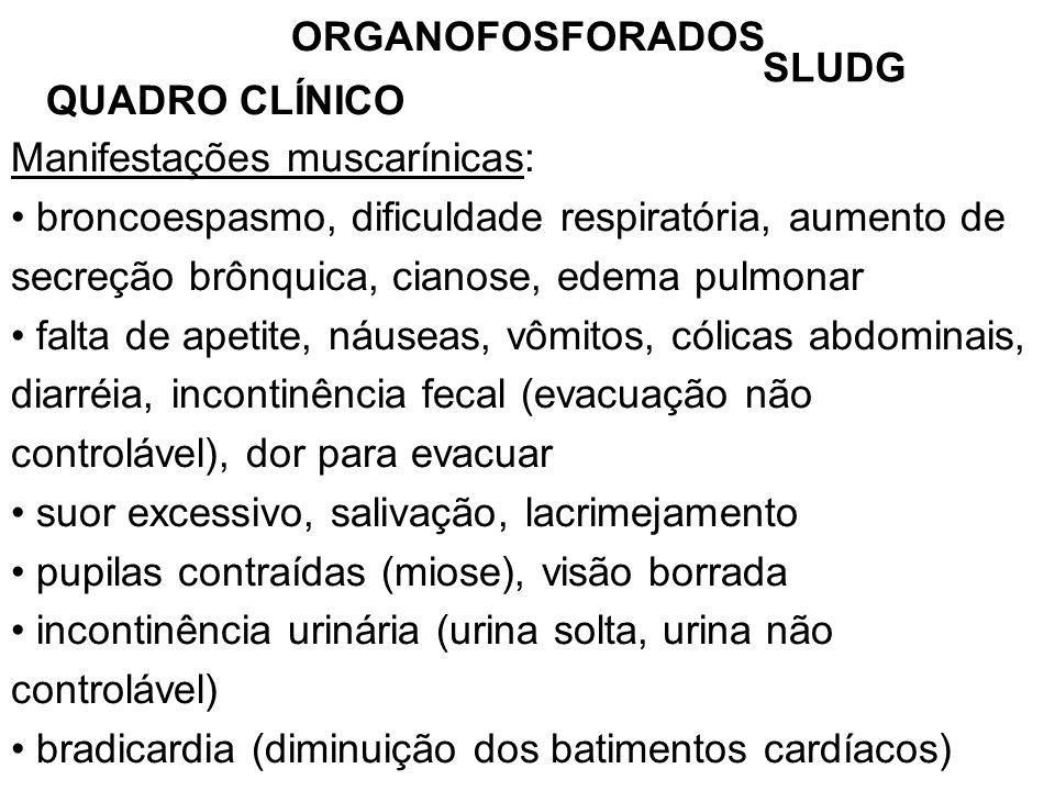 ORGANOFOSFORADOS QUADRO CLÍNICO Manifestações muscarínicas: broncoespasmo, dificuldade respiratória, aumento de secreção brônquica, cianose, edema pulmonar falta de apetite, náuseas, vômitos, cólicas abdominais, diarréia, incontinência fecal (evacuação não controlável), dor para evacuar suor excessivo, salivação, lacrimejamento pupilas contraídas (miose), visão borrada incontinência urinária (urina solta, urina não controlável) bradicardia (diminuição dos batimentos cardíacos) SLUDG