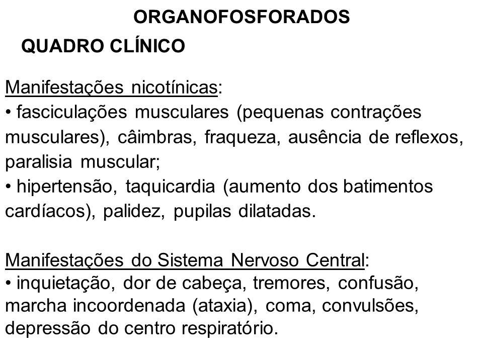 ORGANOFOSFORADOS QUADRO CLÍNICO Manifestações nicotínicas: fasciculações musculares (pequenas contrações musculares), câimbras, fraqueza, ausência de reflexos, paralisia muscular; hipertensão, taquicardia (aumento dos batimentos cardíacos), palidez, pupilas dilatadas.