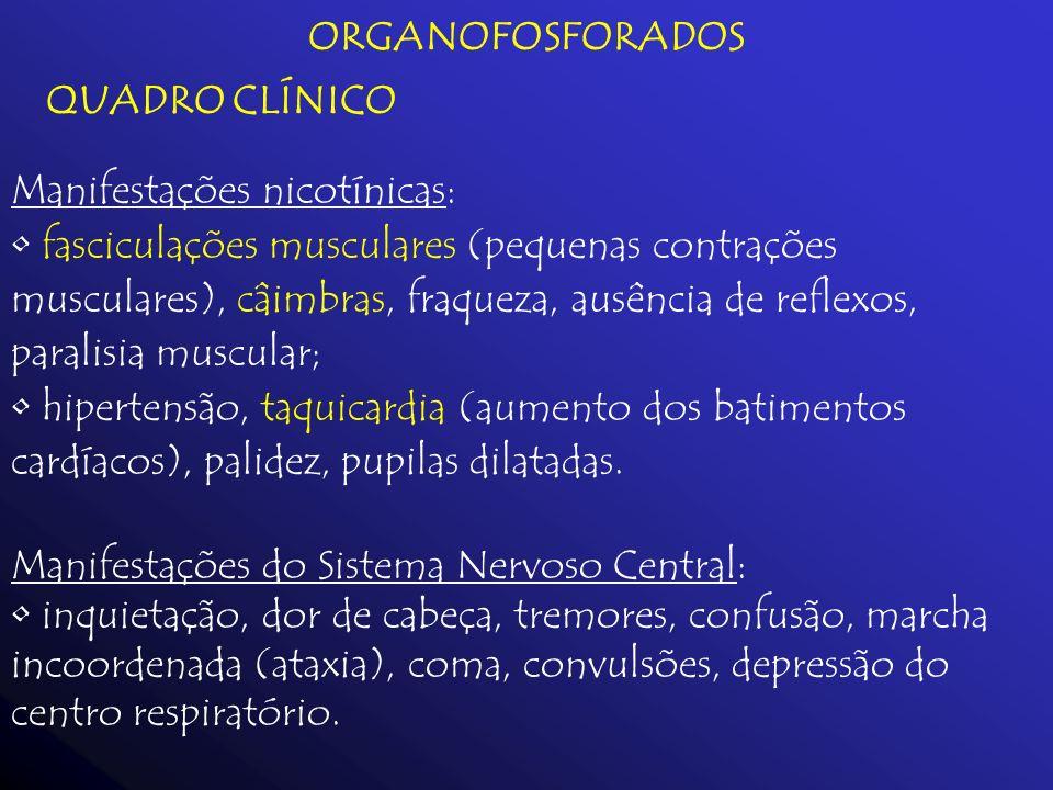 ORGANOFOSFORADOS QUADRO CLÍNICO Manifestações nicotínicas: fasciculações musculares (pequenas contrações musculares), câimbras, fraqueza, ausência de