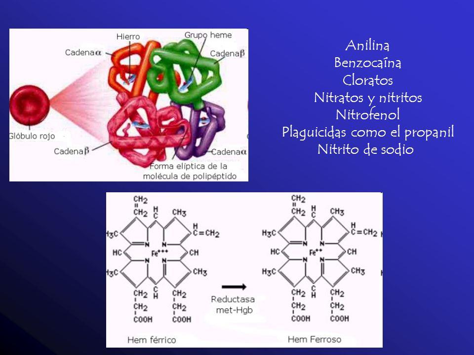 Anilina Benzocaína Cloratos Nitratos y nitritos Nitrofenol Plaguicidas como el propanil Nitrito de sodio