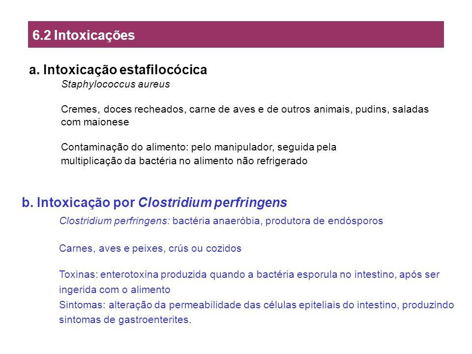 a. Intoxicação estafilocócica Staphylococcus aureus Cremes, doces recheados, carne de aves e de outros animais, pudins, saladas com maionese Contamina