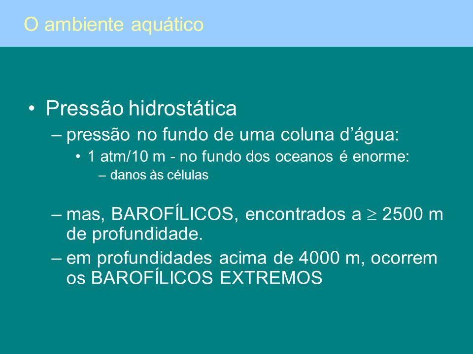 Pressão hidrostática –pressão no fundo de uma coluna dágua: 1 atm/10 m - no fundo dos oceanos é enorme: –danos às células –mas, BAROFÍLICOS, encontrad