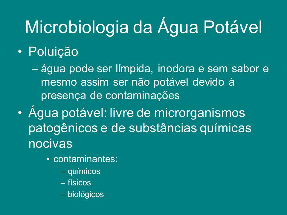 Microbiologia da Água Potável Poluição –água pode ser límpida, inodora e sem sabor e mesmo assim ser não potável devido à presença de contaminações Ág