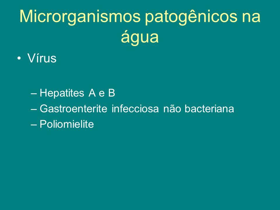 Vírus –Hepatites A e B –Gastroenterite infecciosa não bacteriana –Poliomielite Microrganismos patogênicos na água
