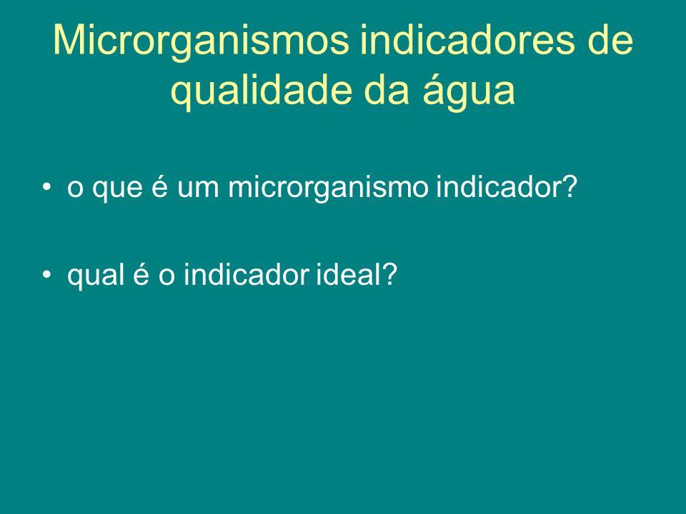 Microrganismos indicadores de qualidade da água o que é um microrganismo indicador? qual é o indicador ideal?