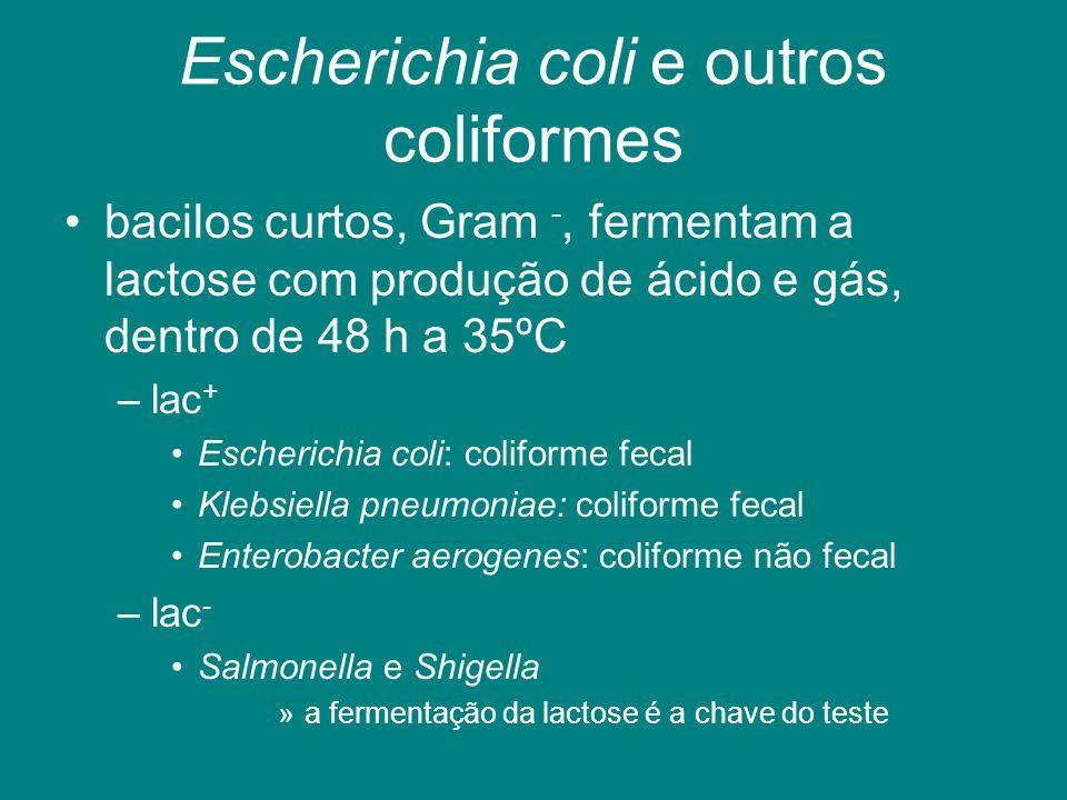 Escherichia coli e outros coliformes bacilos curtos, Gram -, fermentam a lactose com produção de ácido e gás, dentro de 48 h a 35ºC –lac + Escherichia