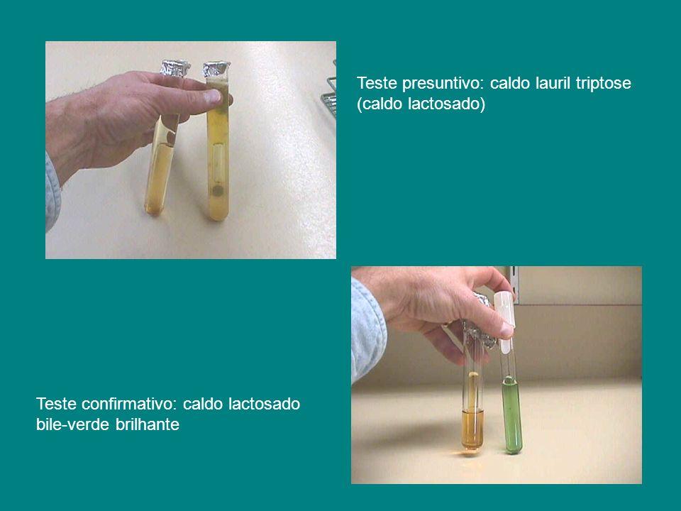 Teste presuntivo: caldo lauril triptose (caldo lactosado) Teste confirmativo: caldo lactosado bile-verde brilhante