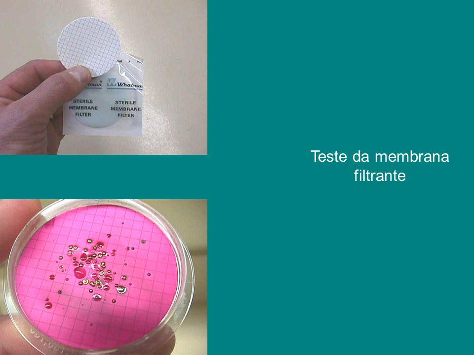 Teste da membrana filtrante