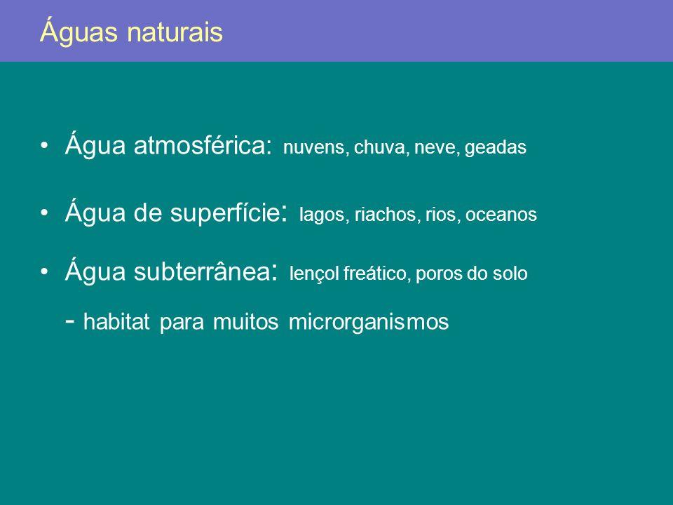 Nutrientes orgânicos e inorgânicos –nitratos e fosfatos: »algas eutrofização O 2 crescimento de outros organismos carga de nutrientes: quantidade de nutrientes –águas próximas à praia: variável (esgotos) –águas de mar aberto: estável e baixa »baixo fitoplâncton (baixo N e Fe) »baixa atividade heterotrófica »atividade fotossintetizante: cianobactérias efluentes industriais: presença de antimicrobianos »alguns microrganismos convertem tais substâncias em formas menos nocivas: Pseudomonas spp.: mercúrio metil mercúrio (volátil) O ambiente aquático