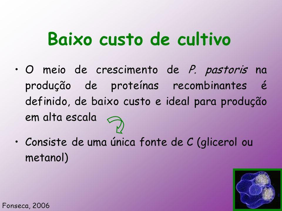 Baixo custo de cultivo O meio de crescimento de P. pastoris na produção de proteínas recombinantes é definido, de baixo custo e ideal para produção em