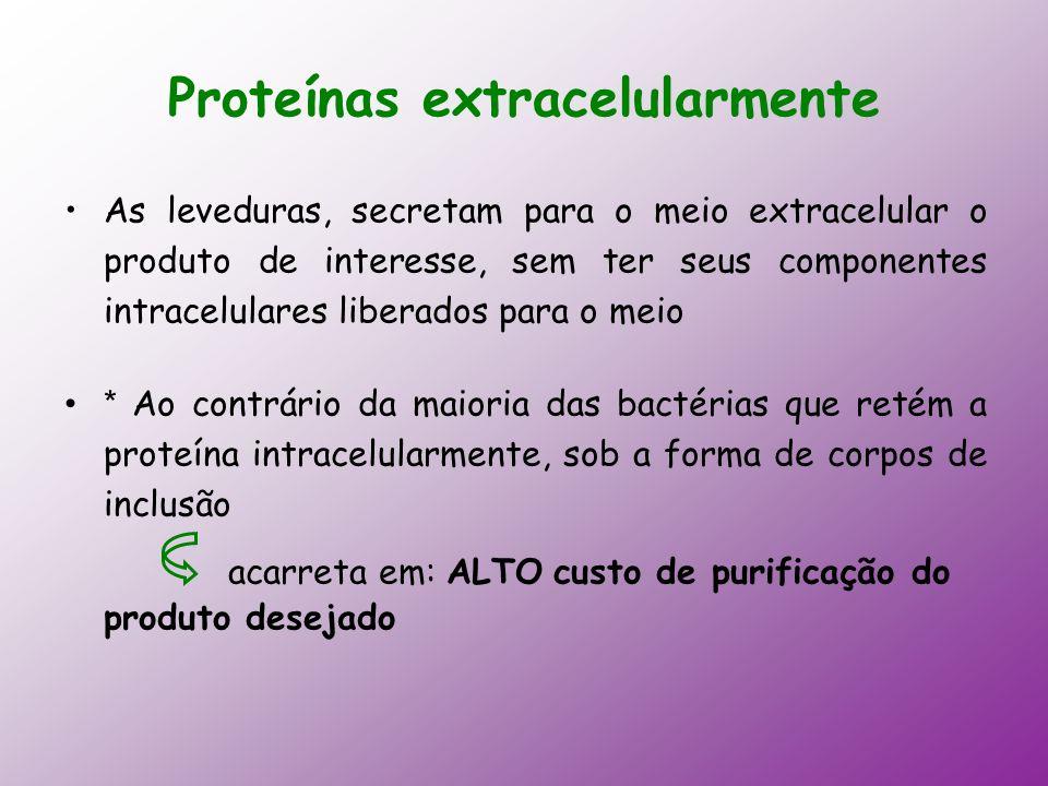Proteínas extracelularmente As leveduras, secretam para o meio extracelular o produto de interesse, sem ter seus componentes intracelulares liberados