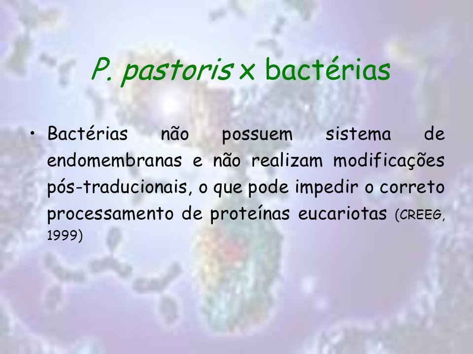 P. pastoris x bactérias Bactérias não possuem sistema de endomembranas e não realizam modificações pós-traducionais, o que pode impedir o correto proc