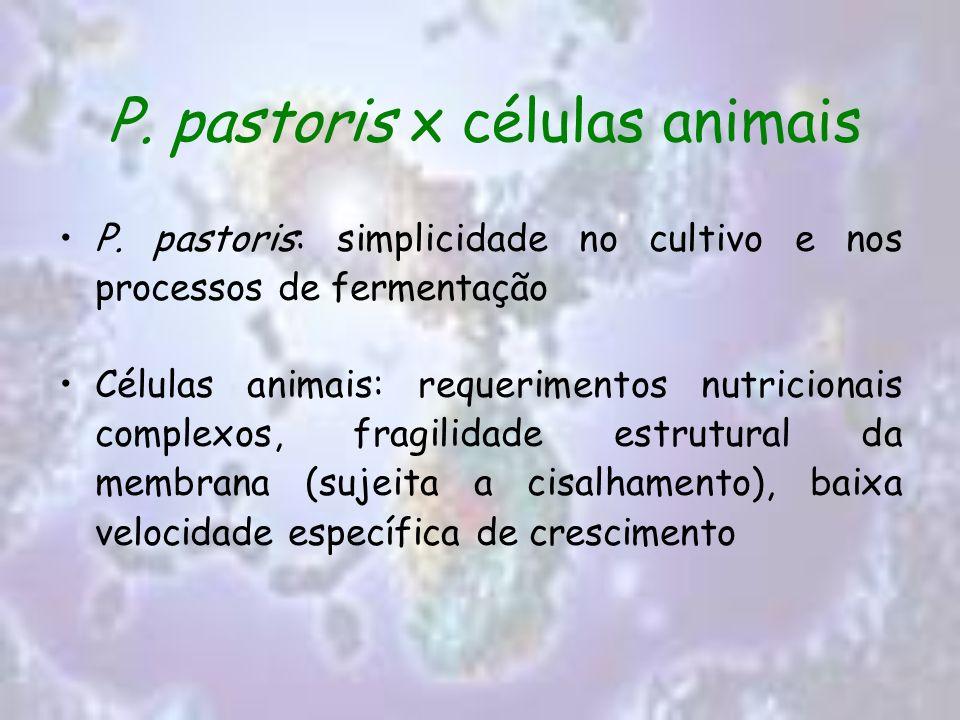 P. pastoris x células animais P. pastoris: simplicidade no cultivo e nos processos de fermentação Células animais: requerimentos nutricionais complexo