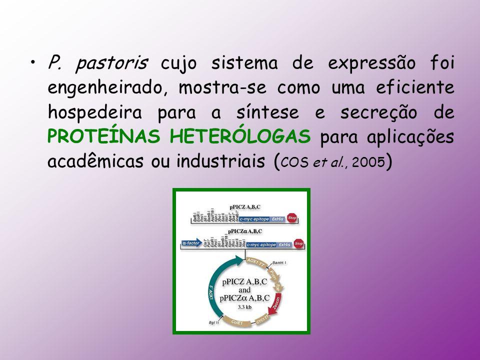 P. pastoris cujo sistema de expressão foi engenheirado, mostra-se como uma eficiente hospedeira para a síntese e secreção de PROTEÍNAS HETERÓLOGAS par
