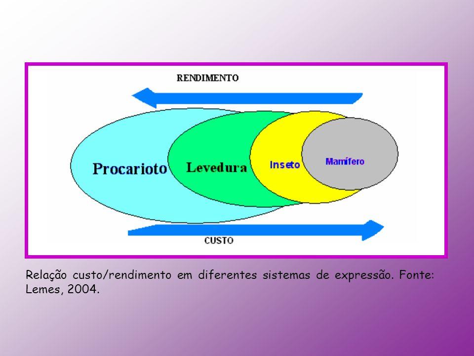 Relação custo/rendimento em diferentes sistemas de expressão. Fonte: Lemes, 2004.