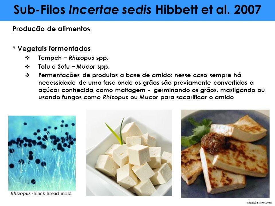 Produção de alimentos * Vegetais fermentados Tempeh – Rhizopus spp. Tofu e Sofu – Mucor spp. Fermentações de produtos a base de amido: nesse caso semp