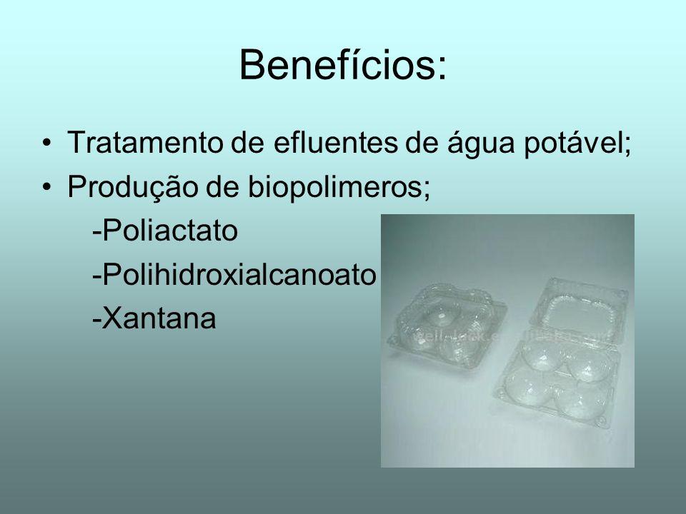 Benefícios: Tratamento de efluentes de água potável; Produção de biopolimeros; -Poliactato -Polihidroxialcanoato -Xantana
