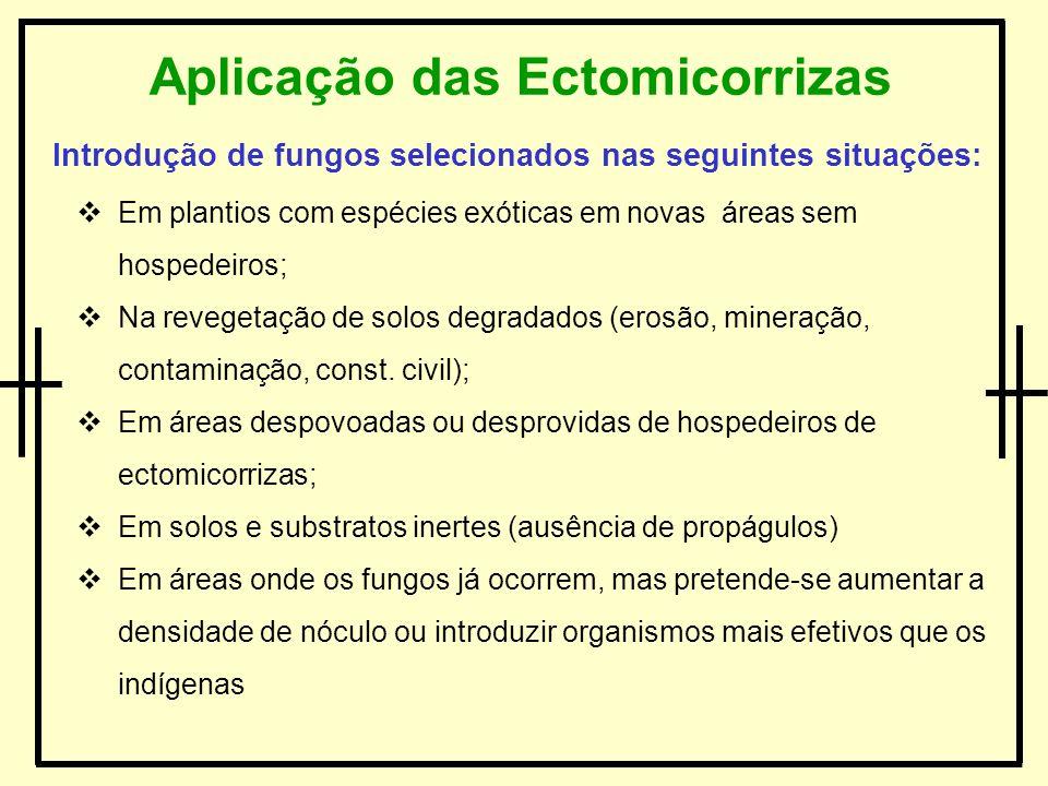 Introdução de fungos selecionados nas seguintes situações: Em plantios com espécies exóticas em novas áreas sem hospedeiros; Na revegetação de solos d