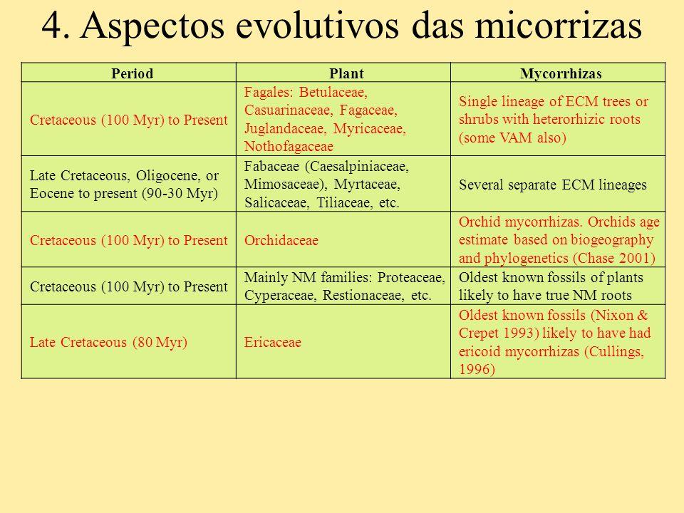 PeriodPlantMycorrhizas Cretaceous (100 Myr) to Present Fagales: Betulaceae, Casuarinaceae, Fagaceae, Juglandaceae, Myricaceae, Nothofagaceae Single li