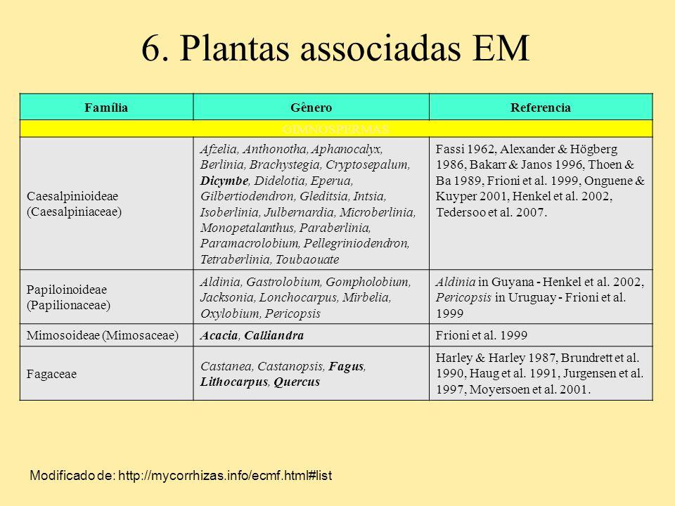6. Plantas associadas EM FamíliaGêneroReferencia GIMNOSPERMAS Caesalpinioideae (Caesalpiniaceae) Afzelia, Anthonotha, Aphanocalyx, Berlinia, Brachyste