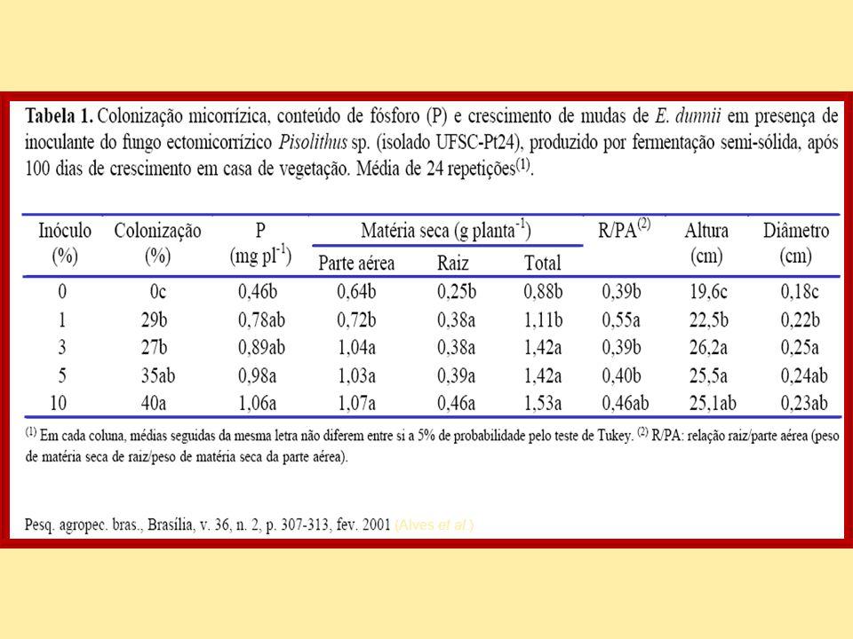(Alves et al.)