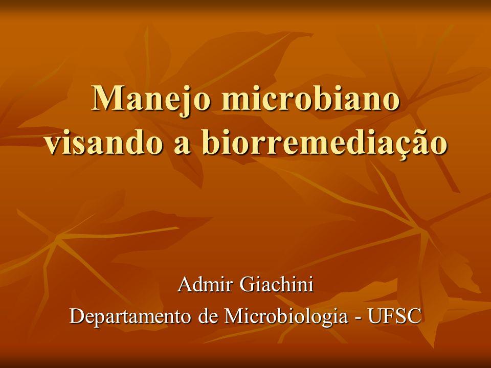 Biorremediação Biorremediação Bioestimulação: adição de nutrientes (N, P, etc.) para estimular populações autóctones de microrganismos Bioestimulação: adição de nutrientes (N, P, etc.) para estimular populações autóctones de microrganismos Bioaeração: gases (O 2, CH 4 ) passivamente adicionados ao substrato a fim de estimular a atividade microbiana Bioaeração: gases (O 2, CH 4 ) passivamente adicionados ao substrato a fim de estimular a atividade microbiana Bioaumentação: inoculação de microrganismos mais propensos à transformação de certo elemento no local onde se encontra o contaminante Bioaumentação: inoculação de microrganismos mais propensos à transformação de certo elemento no local onde se encontra o contaminante Biotransformação