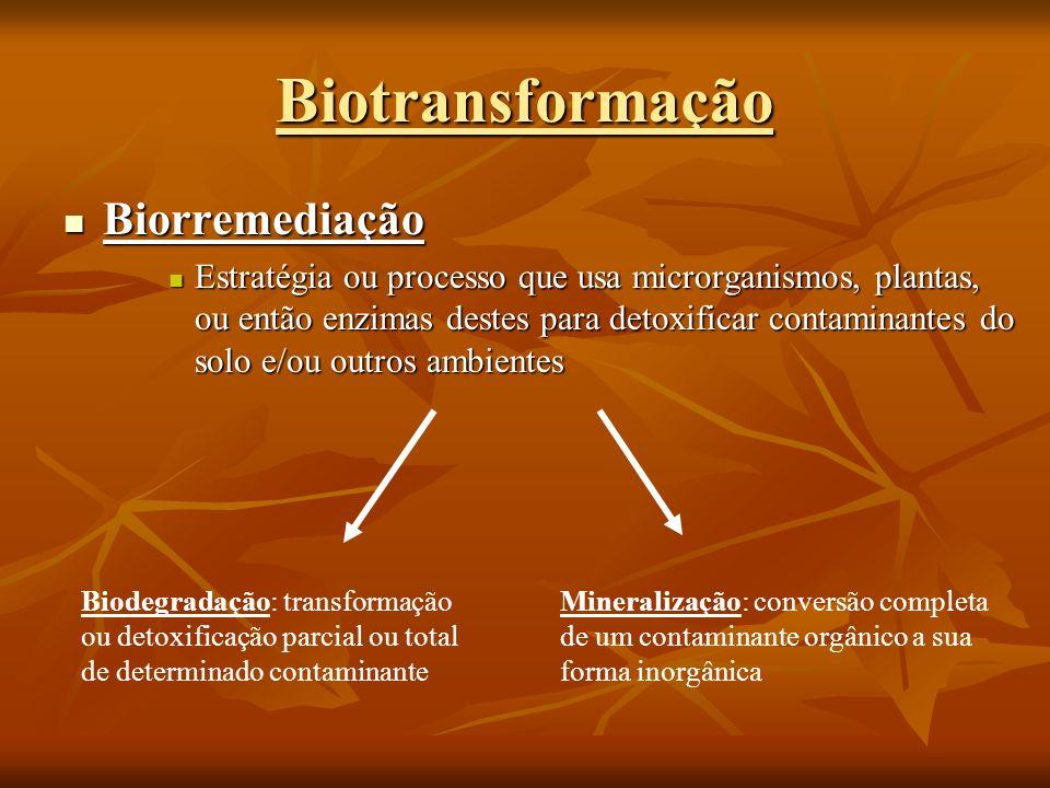 Biorremediação Biorremediação Estratégia ou processo que usa microrganismos, plantas, ou então enzimas destes para detoxificar contaminantes do solo e