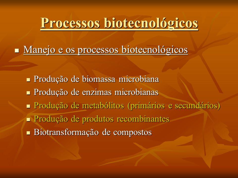 Processos biotecnológicos Produção de biomassa microbiana Produção de biomassa microbiana Produção de inoculantes agrícolas e florestais (BFN e fungos) Produção de inoculantes agrícolas e florestais (BFN e fungos) Produção de bioinseticidas (Beauveria bassiana, Toxinas Bt, etc.) Produção de bioinseticidas (Beauveria bassiana, Toxinas Bt, etc.)