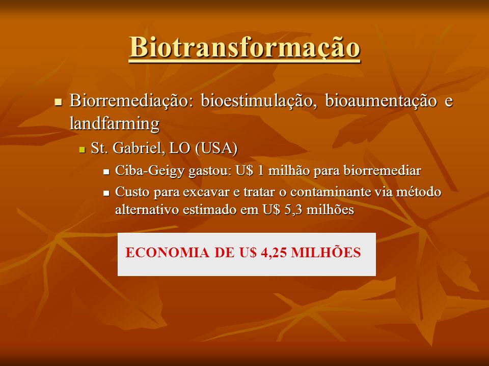 Biorremediação: bioestimulação, bioaumentação e landfarming Biorremediação: bioestimulação, bioaumentação e landfarming St. Gabriel, LO (USA) St. Gabr