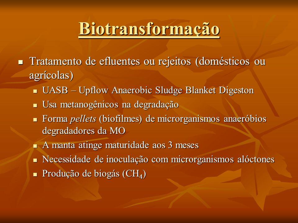 Tratamento de efluentes ou rejeitos (domésticos ou agrícolas) Tratamento de efluentes ou rejeitos (domésticos ou agrícolas) UASB – Upflow Anaerobic Sl