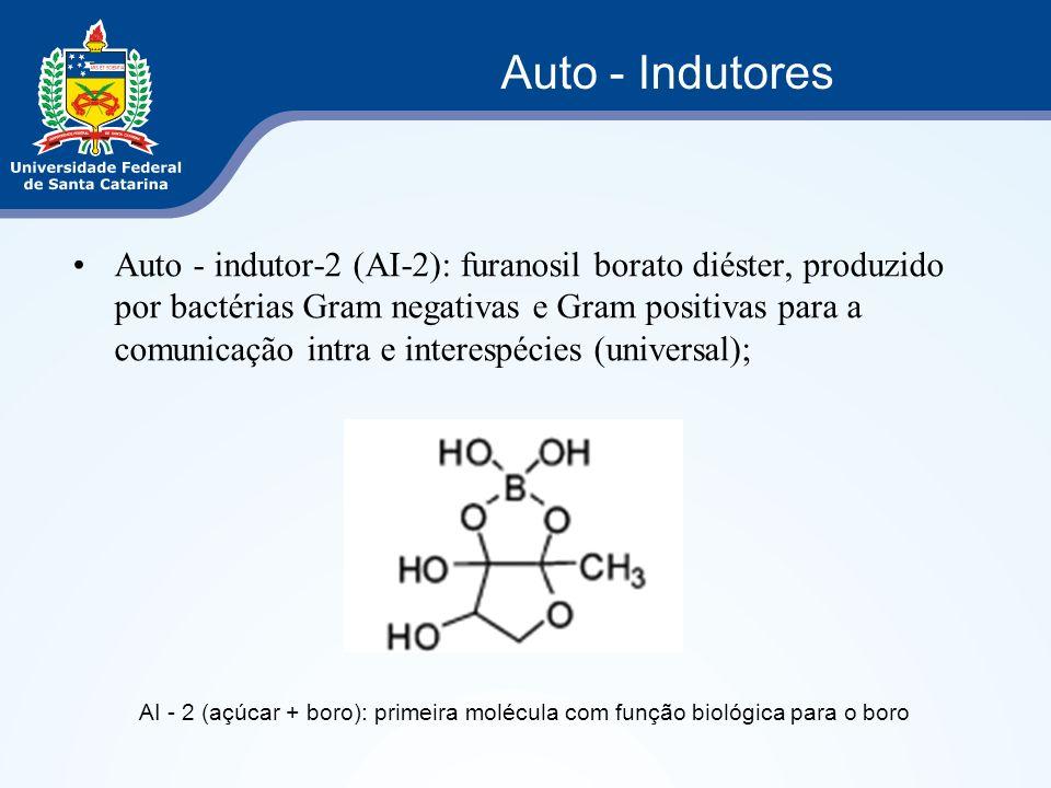 Auto - indutor-2 (AI-2): furanosil borato diéster, produzido por bactérias Gram negativas e Gram positivas para a comunicação intra e interespécies (u