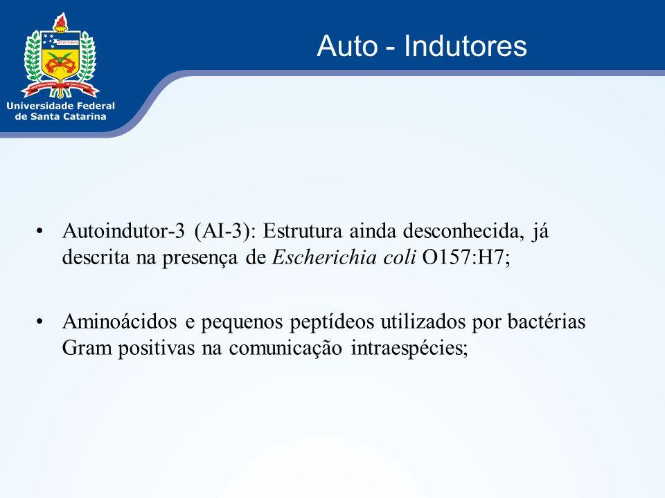 Autoindutor-3 (AI-3): Estrutura ainda desconhecida, já descrita na presença de Escherichia coli O157:H7; Aminoácidos e pequenos peptídeos utilizados p