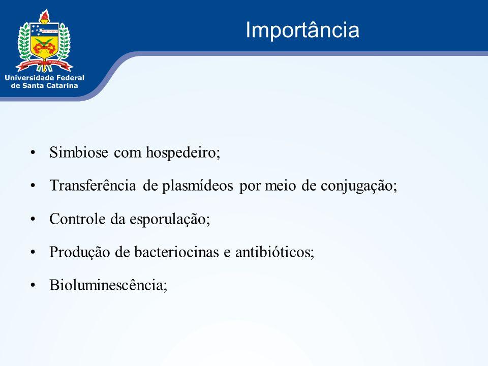 Simbiose com hospedeiro; Transferência de plasmídeos por meio de conjugação; Controle da esporulação; Produção de bacteriocinas e antibióticos; Biolum