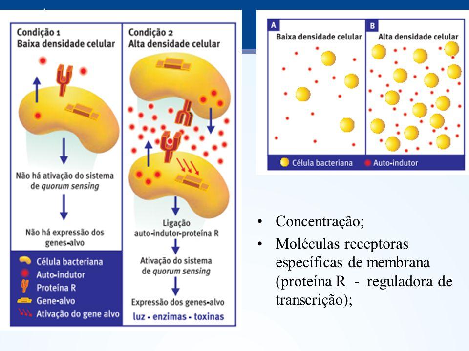 Concentração; Moléculas receptoras específicas de membrana (proteína R - reguladora de transcrição);