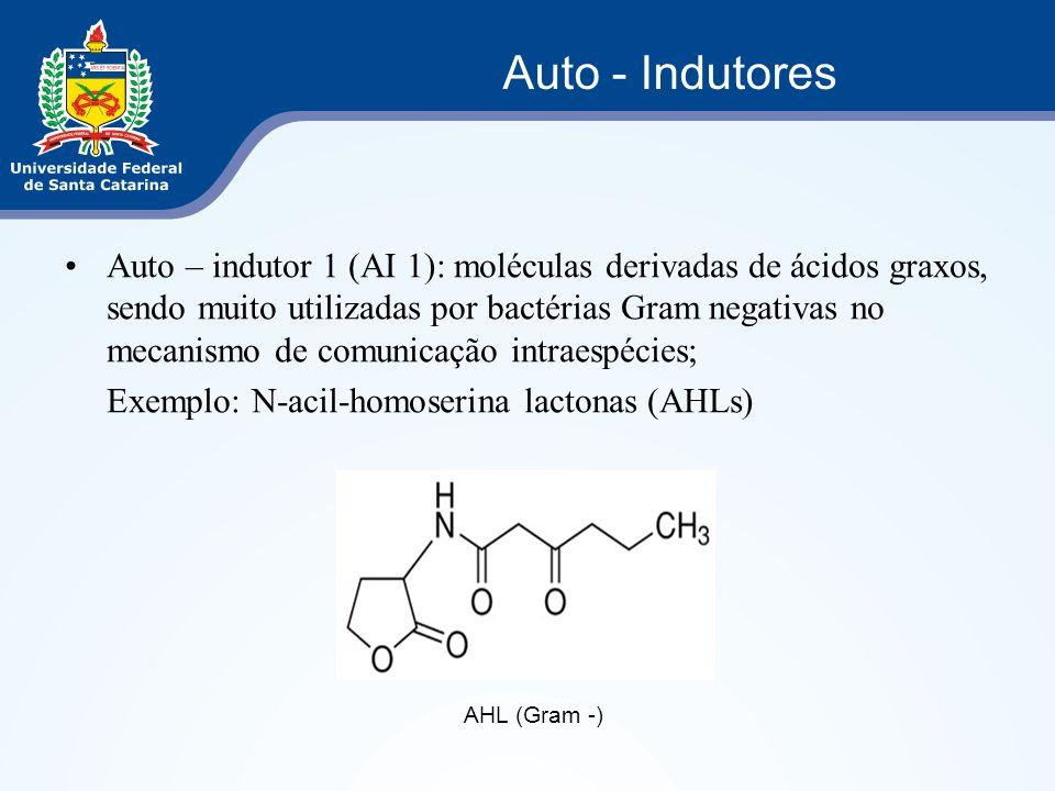 Auto – indutor 1 (AI 1): moléculas derivadas de ácidos graxos, sendo muito utilizadas por bactérias Gram negativas no mecanismo de comunicação intraes
