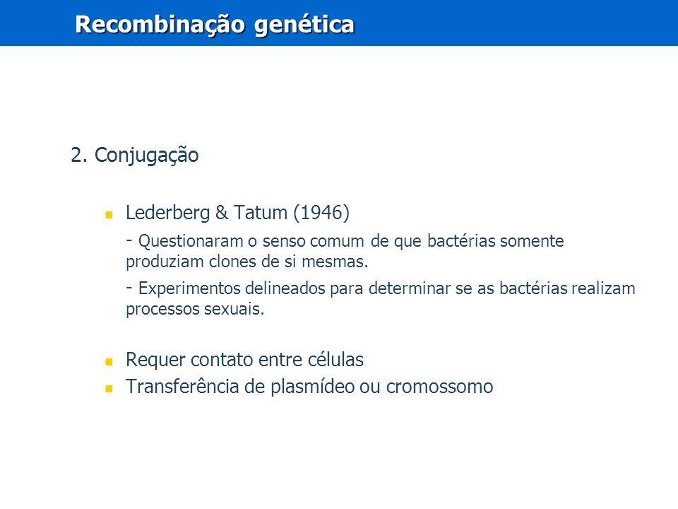 2. Conjugação Lederberg & Tatum (1946) - Questionaram o senso comum de que bactérias somente produziam clones de si mesmas. - Experimentos delineados