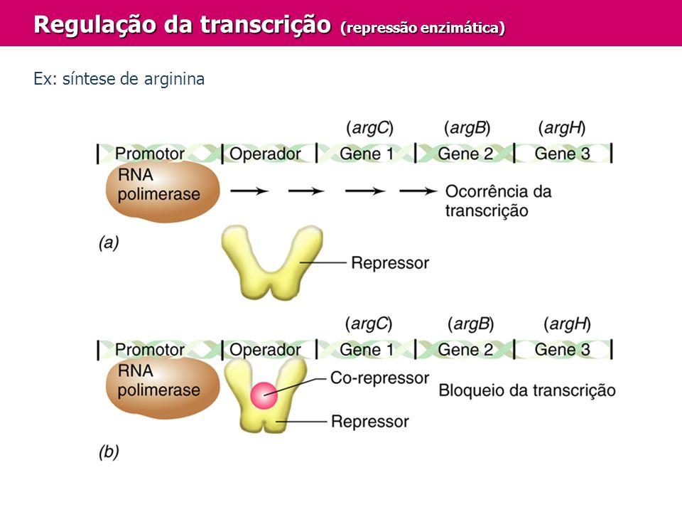 Regulação da transcrição (repressão enzimática) Ex: síntese de arginina