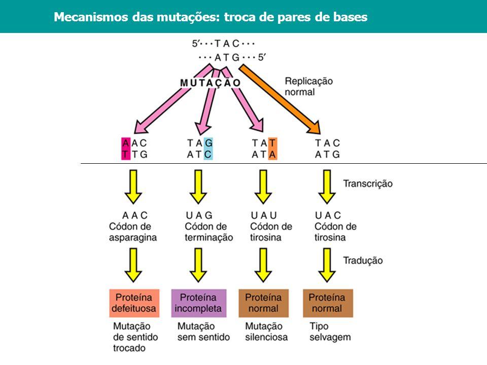 Vários agentes podem aumentar a frequência das mutações: Químicos: análogos de bases, agentes que reagem com o DNA Radiações: raios-X, luz ultra-violeta Elementos transponíveis:Transposons Agentes mutagênicos - A frequência das mutações variam bastante.