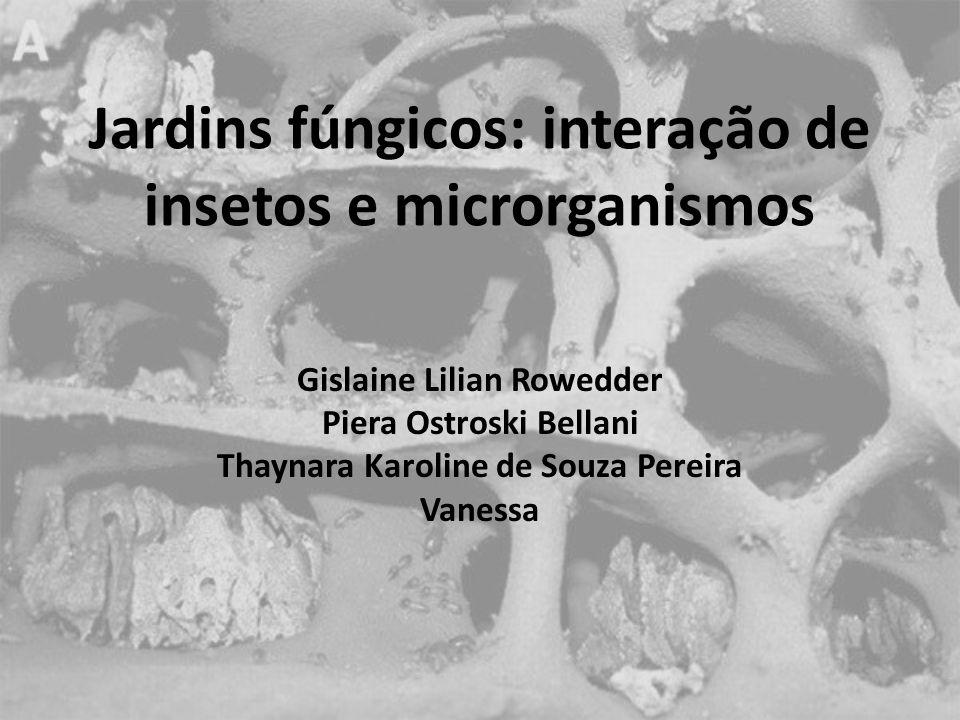 Jardins fúngicos: interação de insetos e microrganismos Gislaine Lilian Rowedder Piera Ostroski Bellani Thaynara Karoline de Souza Pereira Vanessa