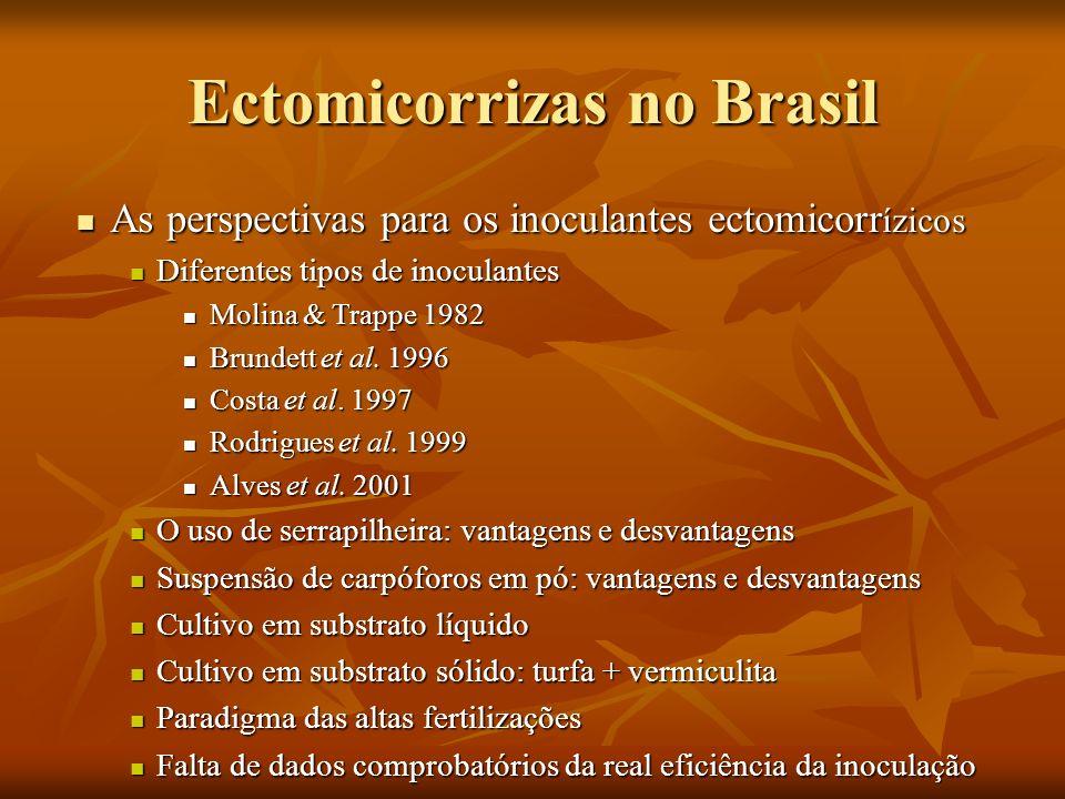 Ectomicorrizas no Brasil As perspectivas para os inoculantes ectomicorr ízicos As perspectivas para os inoculantes ectomicorr ízicos Diferentes tipos