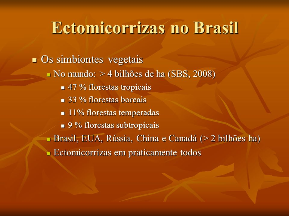 Ectomicorrizas no Brasil Os simbiontes vegetais Os simbiontes vegetais No mundo: > 4 bilhões de ha (SBS, 2008) No mundo: > 4 bilhões de ha (SBS, 2008)